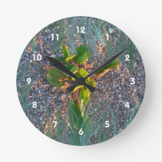 seagrape with grass overlay wallclock