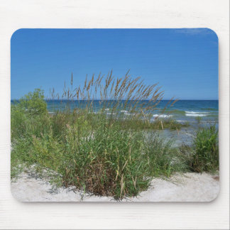 Seagrass Along the Seashore Mouse Pads