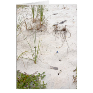 Seagrass and Flotsam Beach Scene Card