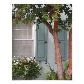 Seagreen shutters photo print