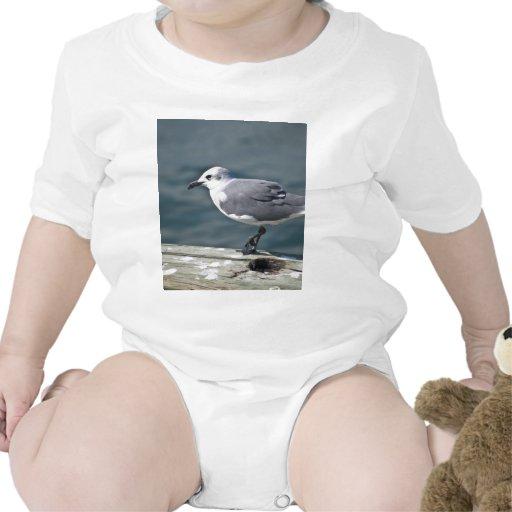 Seagul Traje De Bebé