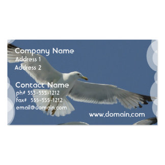 seagull-11.jpg tarjeta de visita