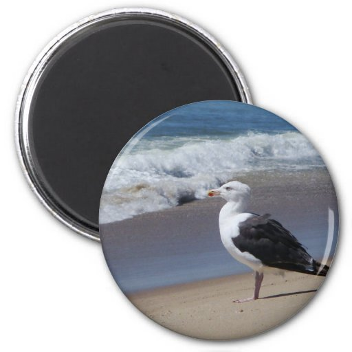 Seagull 2 Inch Round Magnet