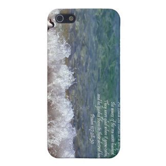 Seagull and Crashing Waves Cover For iPhone 5