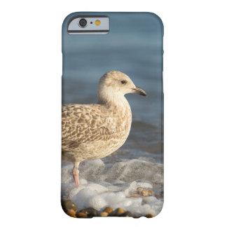 Seagull and sea foam iPhone6 case