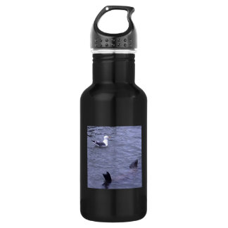 Seagull And Sea Lion Have A Swim Water Bottle