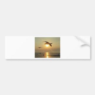 Seagull at Sunset Bumper Sticker