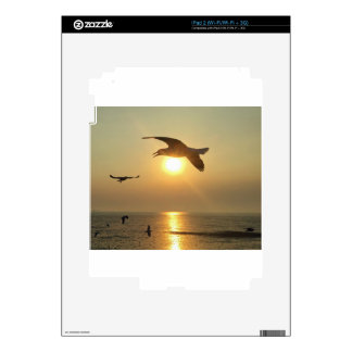 Seagull at Sunset iPad 2 Decals
