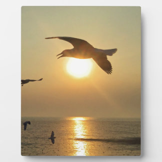 Seagull at Sunset Plaque