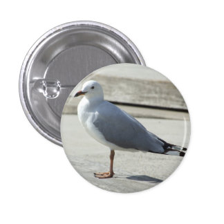 Seagull Badge 1 Inch Round Button