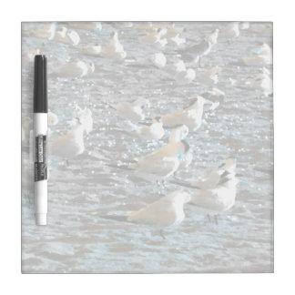 seagull beach birds painted blue theme florida Dry-Erase board