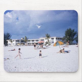 Seagull Beach Florida Mousepad