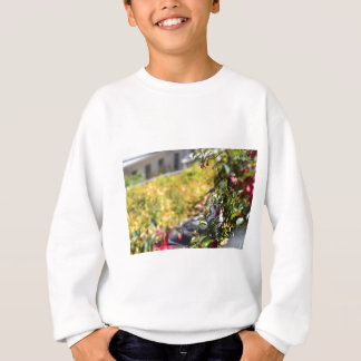 Seagull behind a field of flowers sweatshirt
