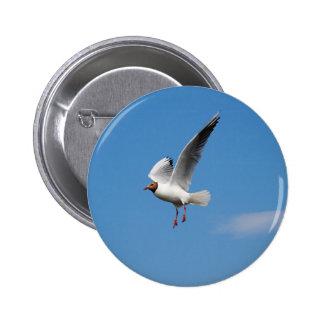 Seagull Bird Pinback Button