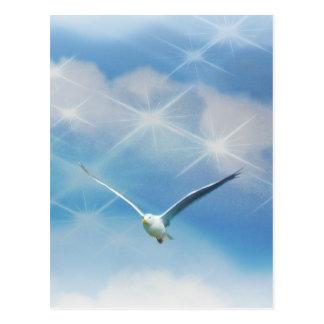 Seagull Bird in Flight Photo Post Card
