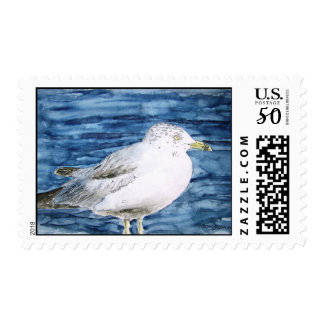 seagull birds seagulls watercolor painting art postage