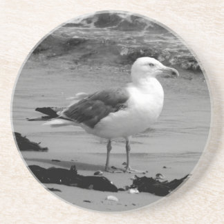 Seagull (Black and White) Drink Coaster