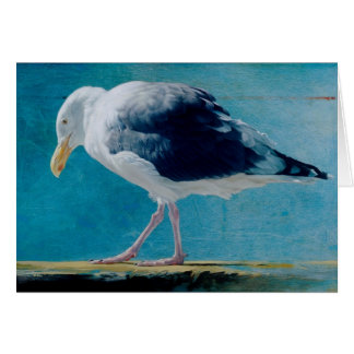 Seagull Blank Card by Andrew Denman