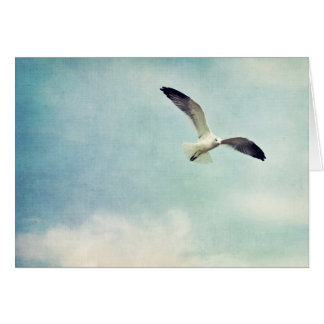 Seagull Blank Greeting Card