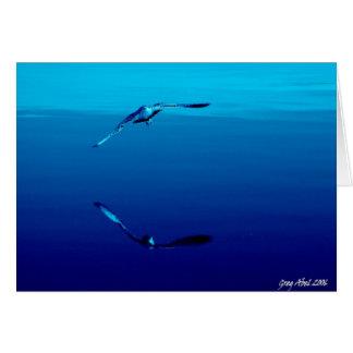 seagull_blues greeting card