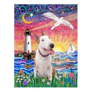 Seagull - Bull Terrier (B) Postcard