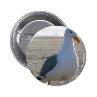 Seagull Buttons