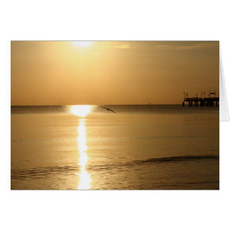 seagull by sunrise stationery note card