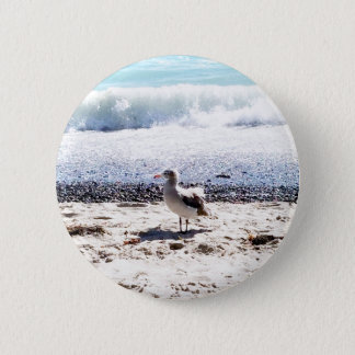 seagull by the ocean on the beach picture button