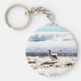 seagull by the ocean on the beach picture keychain