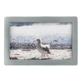 seagull by the ocean on the beach picture rectangular belt buckle