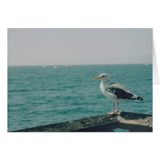 Seagull Stationery Note Card
