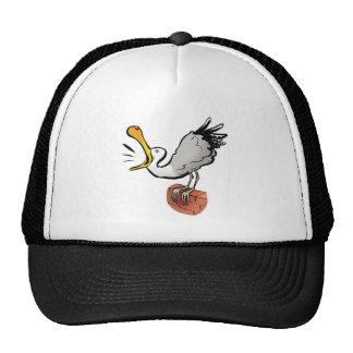 Seagull chatting trucker hat