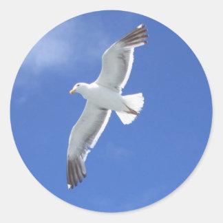 Seagull Classic Round Sticker