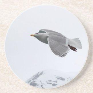 Seagull Coaster coaster