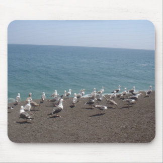 seagull convention mouse pad