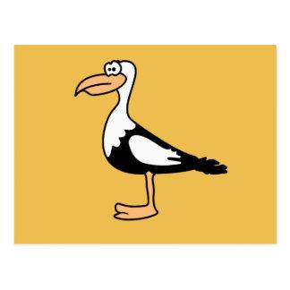 Seagull cute animal motifs postcard