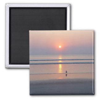 Seagull Daytona Beach FL Ocean Sunrise Magnet