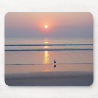 Seagull Daytona Beach FL Ocean Sunrise Mousepad