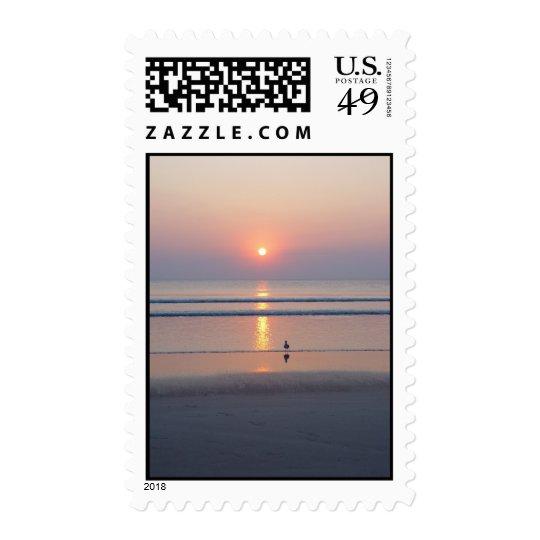 Seagull Daytona Beach FL Ocean Sunrise Stamps