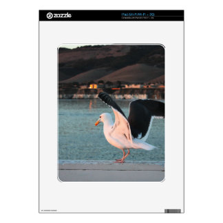 Seagull Decal For The iPad