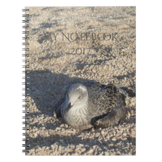 Seagull Enjoying The Sun Summer Photography Spiral Notebook