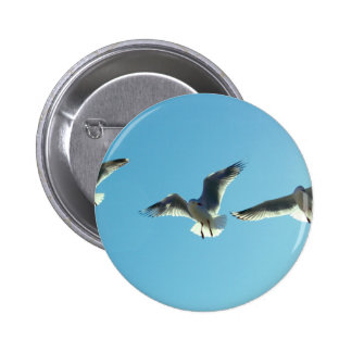Seagull flight buttons