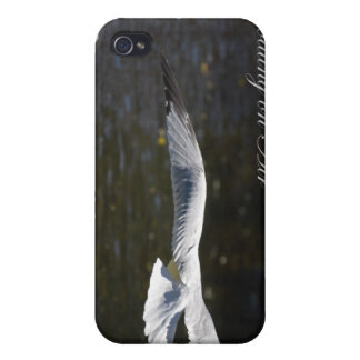 Seagull Floating On Air Iphone Cover For iPhone 4