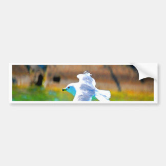 seagull fly to love paradise bumper sticker
