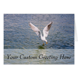 Seagull Flying Above Water Card