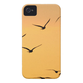 Seagull flying at night Case-Mate iPhone 4 case