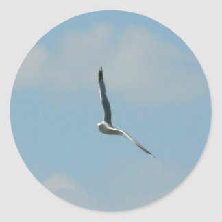 Seagull Flying On Sky High Round Stickers