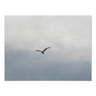 Seagull flying over Lake Print