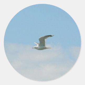 Seagull Flying Over Ocean Sticker