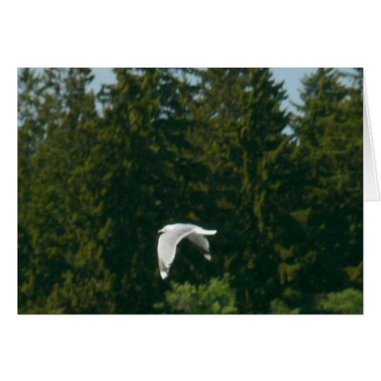 Seagull Flying Over Trees Card
